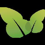 leaf-icon-2